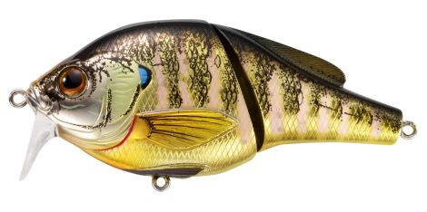 LIVE TARGET CURRICAN BLUEGILL WAKEBAIT BGW95T-102